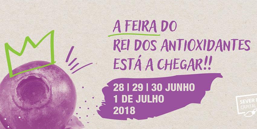 Feira do Mirtilo 2018
