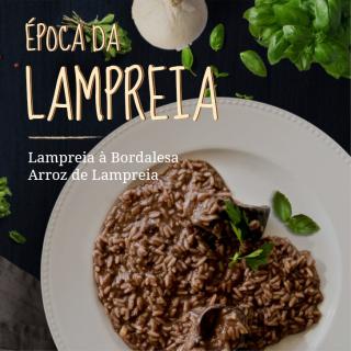 Lampreia