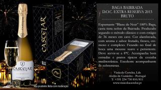 Baga Bairrada Extra Reserva Bruto 2013
