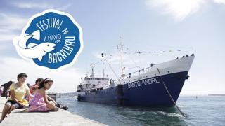 Festival do Bacalhau de 12 a 16 de agosto!