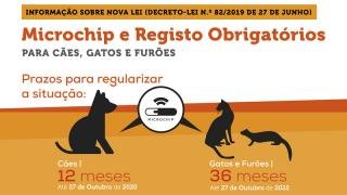 Microship e registo obrigatório